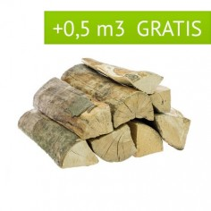 Dąb 10 mp + 0,7 gratis